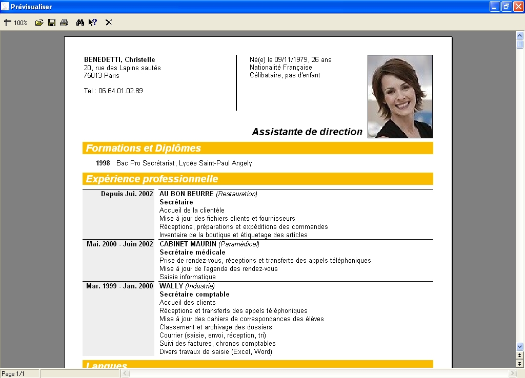 exemple cv informaticien